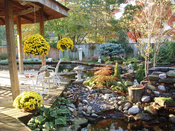 autumn at zenpond